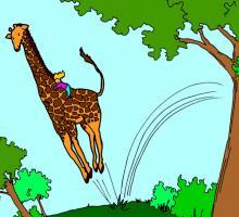 Johnny Giraffe